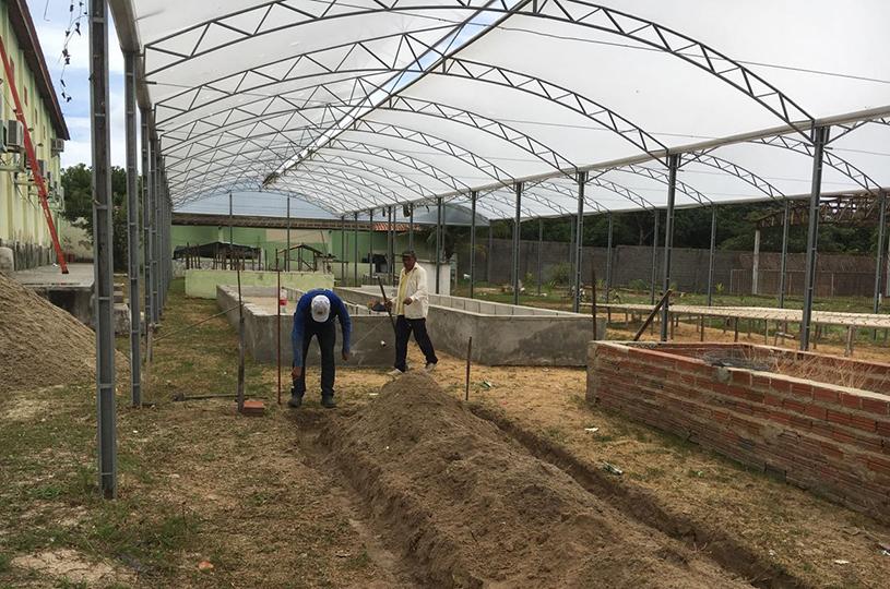 Eusébio vai retornar com o Projeto de Hidroponia Social