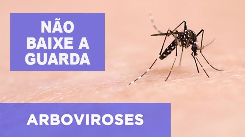 Prefeitura de Eusébio solicita que população mantenha medidas de prevenção ao Aedes Aegypti em seus lares